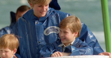 Prince Harry's Historical Memories Over Mother's Death